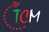 TCM-klok